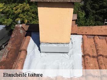 etanch it de toiture vieux conde t l. Black Bedroom Furniture Sets. Home Design Ideas